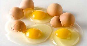 Hội ăn chay khẩu chiến quanh chuyện quả trứng